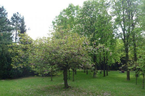 jardin_citadel (3)